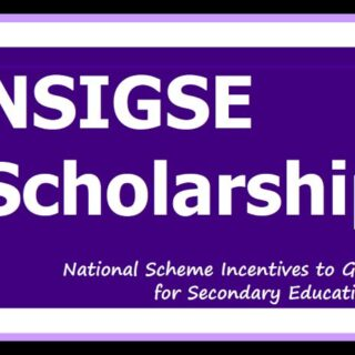 NSIGSE Scheme Application Form